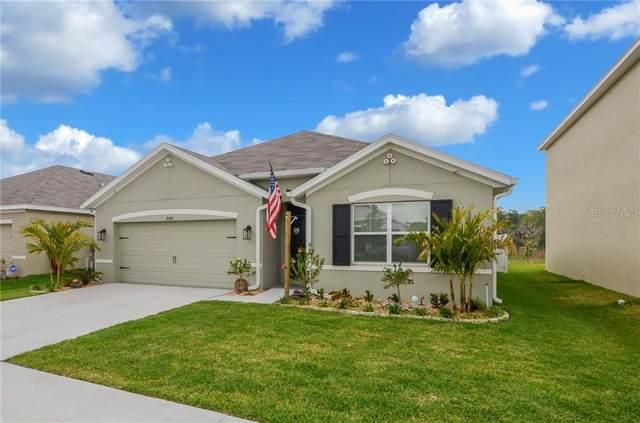 35599 Stella Vast Drive, Zephyrhills, FL 33541 (MLS #T3298304) :: Zarghami Group