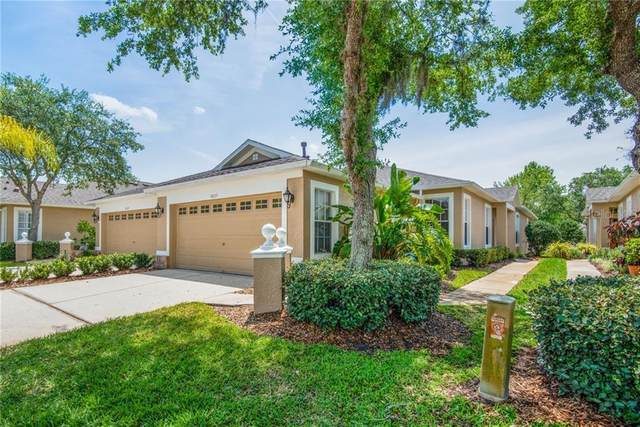 8605 Egret Point Court, Tampa, FL 33647 (MLS #T3298559) :: Your Florida House Team