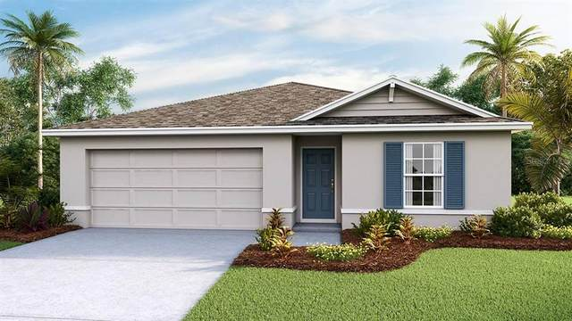 13235 Golden Lime Avenue, Spring Hill, FL 34609 (MLS #T3298786) :: Premier Home Experts