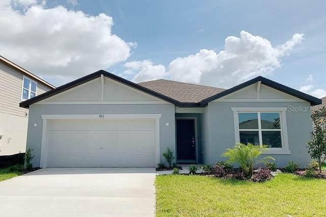 911 Swaying Sawgrass Ave, Ruskin, FL 33570 (MLS #T3298954) :: Team Bohannon Keller Williams, Tampa Properties