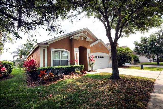 6525 Bridgecrest Drive, Lithia, FL 33547 (MLS #T3299063) :: Frankenstein Home Team
