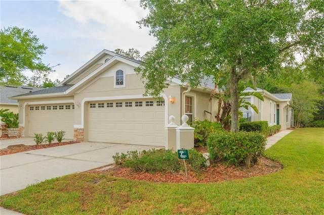 3430 Chapel Creek Circle, Wesley Chapel, FL 33544 (MLS #T3299171) :: Dalton Wade Real Estate Group