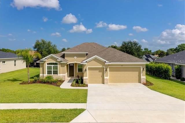 12115 Phoenix Avenue, Brooksville, FL 34614 (MLS #T3299199) :: Everlane Realty