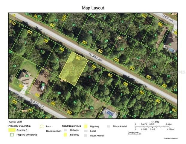 14113 Clarissa Lane, Port Charlotte, FL 33981 (MLS #T3299375) :: The Lersch Group