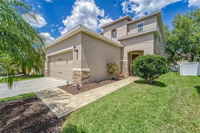 26951 Cotton Key Lane, Wesley Chapel, FL 33544 (MLS #T3299401) :: Everlane Realty