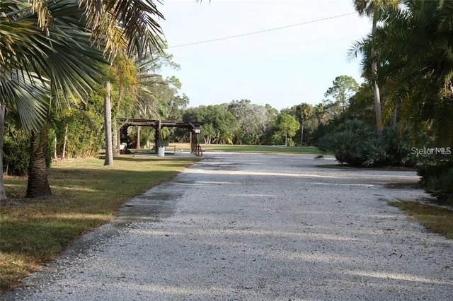 13025 Memorial Highway, Tampa, FL 33635 (MLS #T3299402) :: Delgado Home Team at Keller Williams