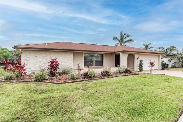 1024 Tamarac Drive, Holiday, FL 34690 (MLS #T3299440) :: Griffin Group