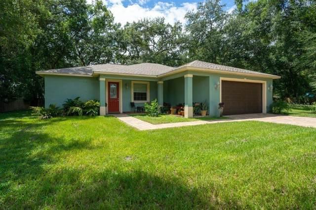 7808 N Newport Avenue, Tampa, FL 33604 (MLS #T3299501) :: The Nathan Bangs Group
