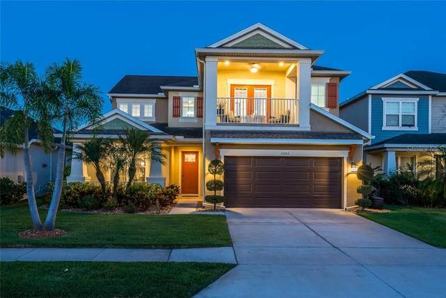 11603 Maple Palm Way, Tampa, FL 33626 (MLS #T3299556) :: Griffin Group
