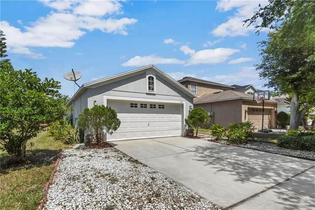 439 Maple Pointe Drive, Seffner, FL 33584 (MLS #T3299561) :: Young Real Estate