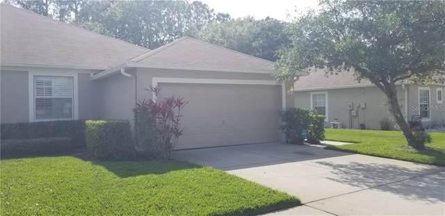 5553 Autumn Shire Drive, Zephyrhills, FL 33541 (MLS #T3299563) :: Team Borham at Keller Williams Realty