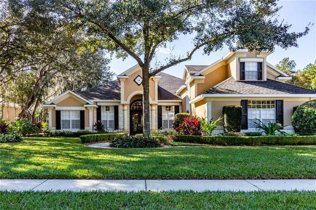 5841 Audubon Manor Boulevard, Lithia, FL 33547 (MLS #T3299581) :: Griffin Group