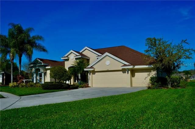 26645 Winged Elm Drive, Wesley Chapel, FL 33544 (MLS #T3299584) :: Team Bohannon Keller Williams, Tampa Properties
