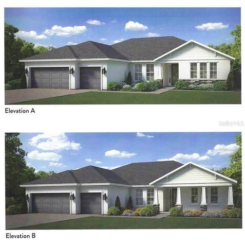 14112 Tomentosa Avenue, Riverview, FL 33569 (MLS #T3299635) :: Pepine Realty
