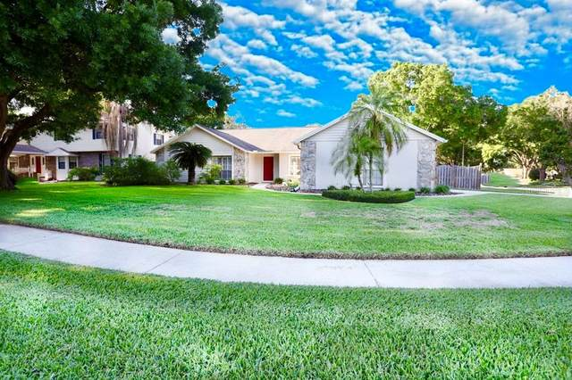 15912 Dover Cliffe Drive, Lutz, FL 33548 (MLS #T3299691) :: Frankenstein Home Team