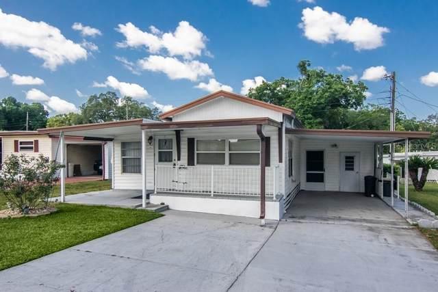 6205 Alpine Drive, Zephyrhills, FL 33542 (MLS #T3299705) :: Griffin Group