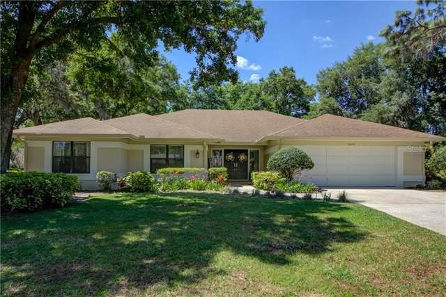 2897 Hammock Drive, Plant City, FL 33566 (MLS #T3299732) :: Dalton Wade Real Estate Group