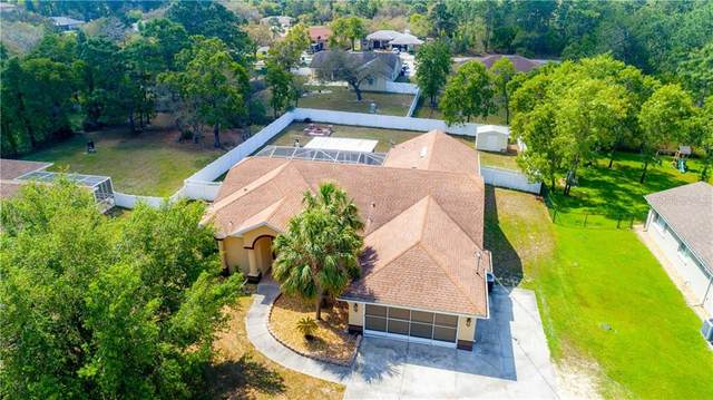 10340 Desert Sparrow Avenue, Weeki Wachee, FL 34613 (MLS #T3299778) :: Everlane Realty