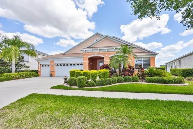 5237 Moon Shell Drive, Apollo Beach, FL 33572 (MLS #T3299803) :: Frankenstein Home Team