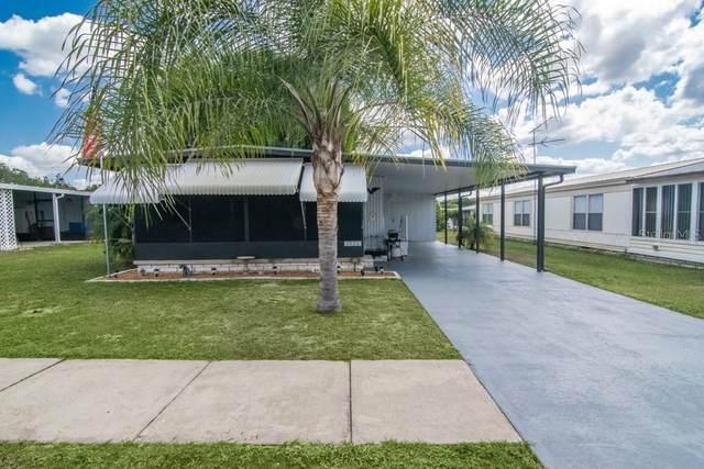 3920 Kim Drive, Wesley Chapel, FL 33543 (MLS #T3299829) :: Dalton Wade Real Estate Group