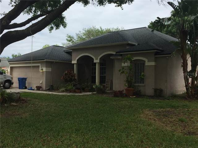17325 Hubers Court, Odessa, FL 33556 (MLS #T3299837) :: Aybar Homes