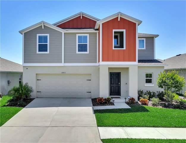 12823 Scarlet Star Drive, Riverview, FL 33579 (MLS #T3299841) :: Everlane Realty