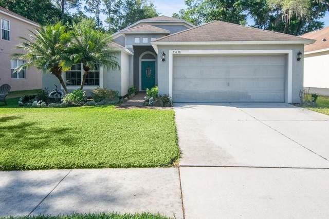 35138 Meadow Reach Drive, Zephyrhills, FL 33541 (MLS #T3299853) :: Griffin Group