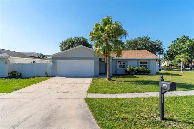 11416 Wheeling Drive, Tampa, FL 33625 (MLS #T3299866) :: The Lersch Group