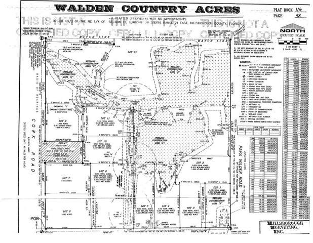 Miley Road, Plant City, FL 33565 (MLS #T3299884) :: Vacasa Real Estate