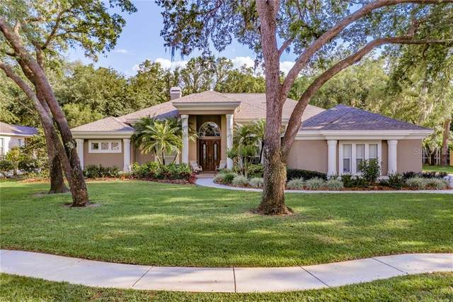 6007 Hammock Hill Avenue, Lithia, FL 33547 (MLS #T3299900) :: Dalton Wade Real Estate Group