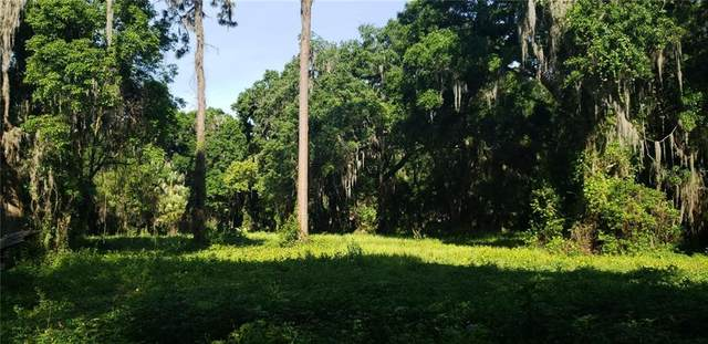 2805 Ranch Road, Dover, FL 33527 (MLS #T3299922) :: Griffin Group