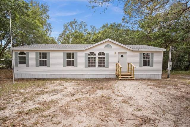 10062 Country Road, Weeki Wachee, FL 34613 (MLS #T3299924) :: Young Real Estate