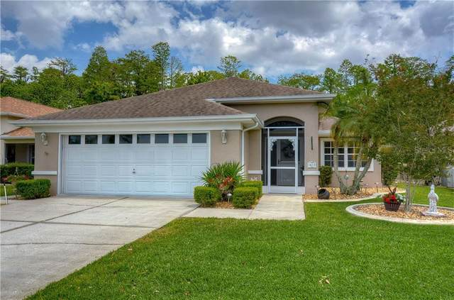 1612 Orchardgrove Avenue, New Port Richey, FL 34655 (MLS #T3300035) :: Griffin Group