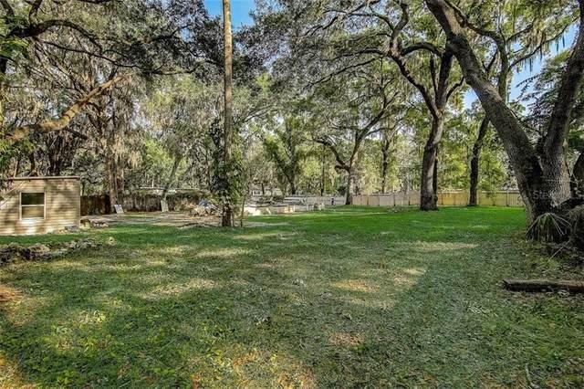 3909 Alafia Boulevard, Brandon, FL 33511 (MLS #T3300060) :: Armel Real Estate