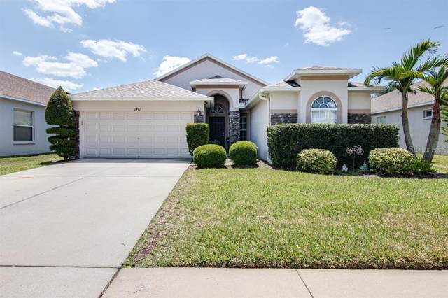 11471 Weston Course Loop, Riverview, FL 33579 (MLS #T3300069) :: The Duncan Duo Team