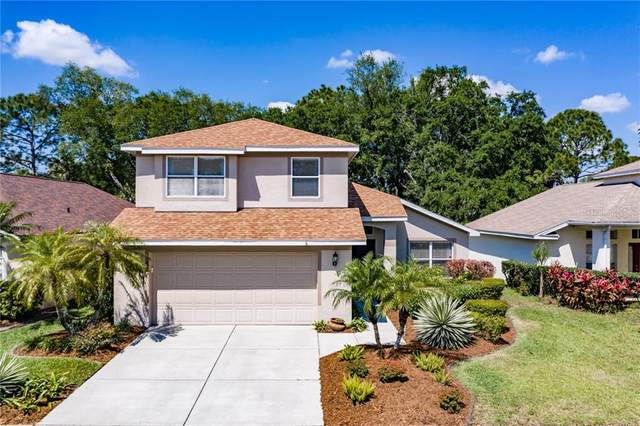 3333 Stonebridge Trail, Valrico, FL 33596 (MLS #T3300083) :: The Duncan Duo Team