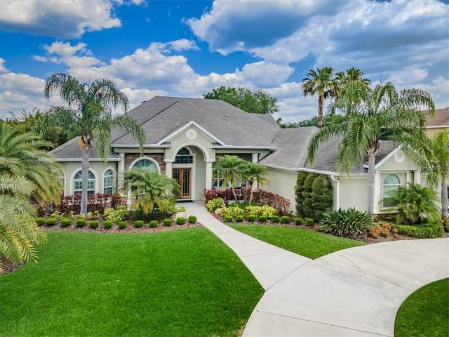 6251 Kingbird Manor Drive, Lithia, FL 33547 (MLS #T3300116) :: Griffin Group