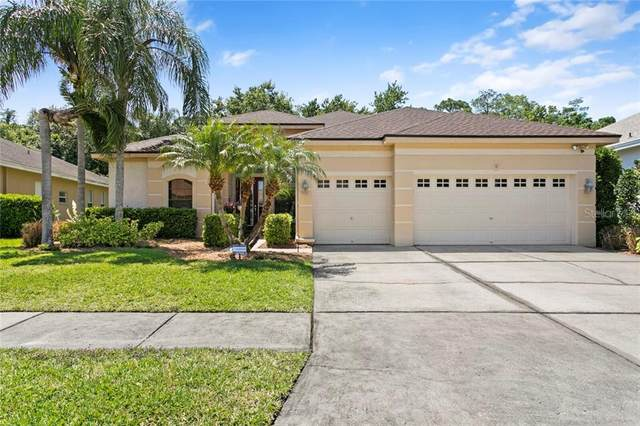 10617 Gretna Green Drive, Tampa, FL 33626 (MLS #T3300133) :: Team Bohannon Keller Williams, Tampa Properties