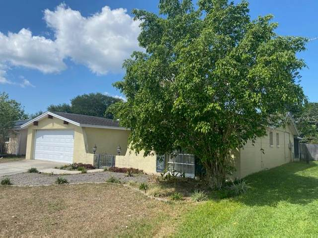 9035 Rainbow Lane, Port Richey, FL 34668 (MLS #T3300223) :: Frankenstein Home Team