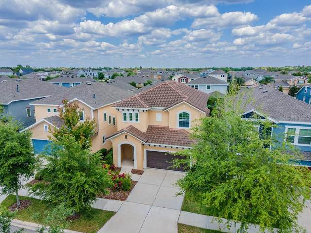 14318 Barrington Stowers Drive, Lithia, FL 33547 (MLS #T3300267) :: Griffin Group