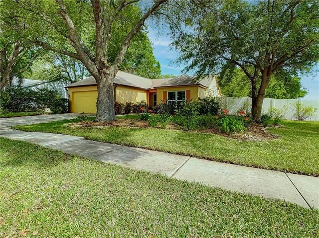 26844 Carmen Place, Lutz, FL 33559 (MLS #T3300283) :: The Duncan Duo Team