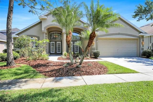 16308 Bridgewalk Drive, Lithia, FL 33547 (MLS #T3300339) :: The Duncan Duo Team
