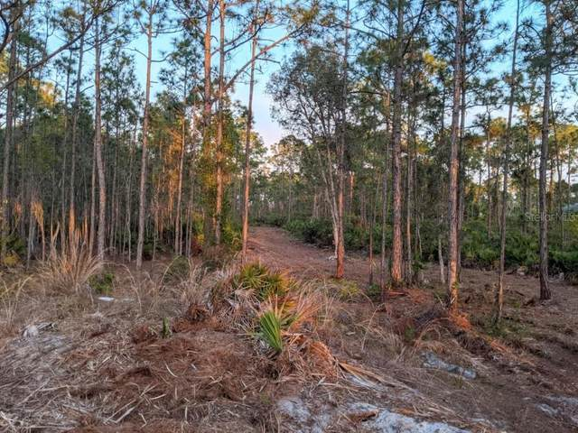 15235 Deer Pass Road, Punta Gorda, FL 33955 (MLS #T3300396) :: Premier Home Experts