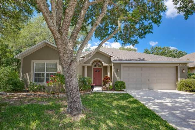 2002 Highview Fall Place, Brandon, FL 33510 (MLS #T3300437) :: Griffin Group