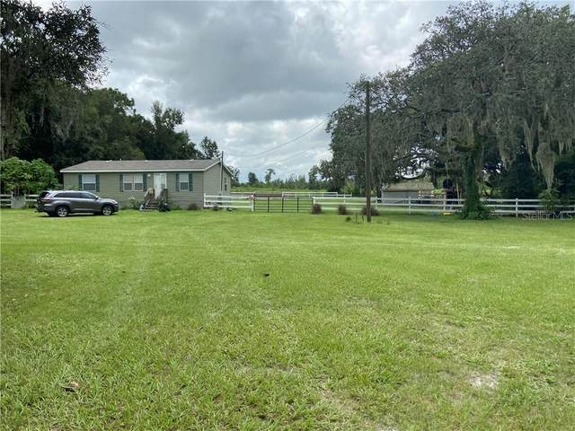 17719 Bosley Drive, Spring Hill, FL 34610 (MLS #T3300479) :: Godwin Realty Group