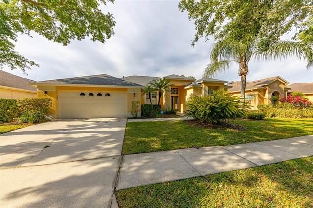 10212 Quails Landing Avenue, Tampa, FL 33647 (MLS #T3300520) :: MVP Realty