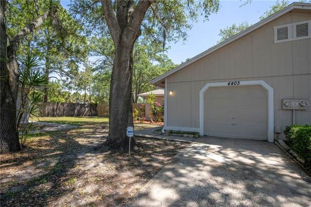 Tampa, FL 33624 :: Young Real Estate