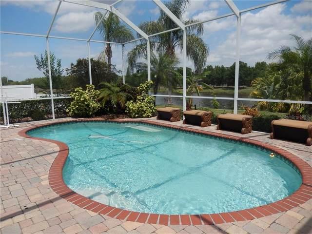 9020 Pinebreeze Drive, Riverview, FL 33578 (MLS #T3300550) :: The Light Team