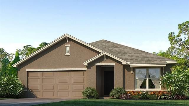 812 Tidal Rock Avenue SE, Ruskin, FL 33570 (MLS #T3300557) :: Southern Associates Realty LLC
