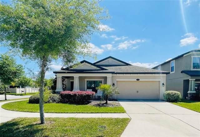 11702 Albatross Lane, Riverview, FL 33569 (MLS #T3300565) :: Southern Associates Realty LLC